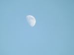 """""""Shoot for the moon. Even if you miss, you'll land among the stars."""" - Norman Vincent Peale"""